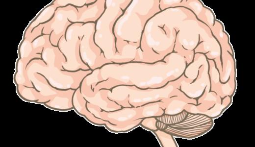 楽しく簡単に覚える医療英単語集 (脳)
